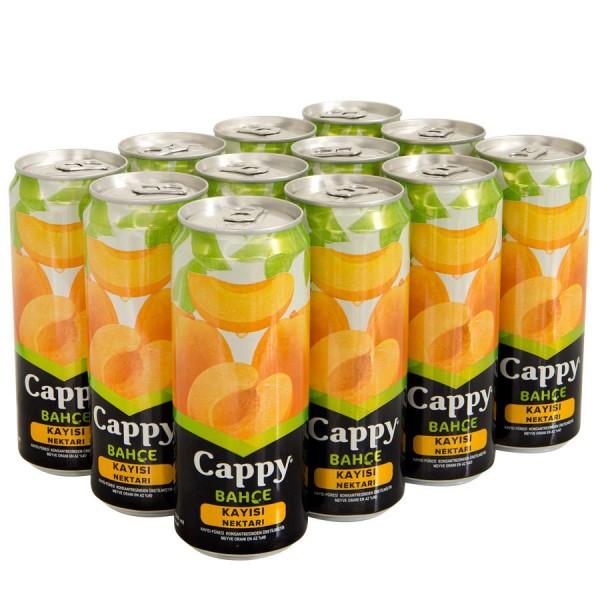 Cappy Meyve Suyu Kayısı Aromalı 330 ml X 12 Adet